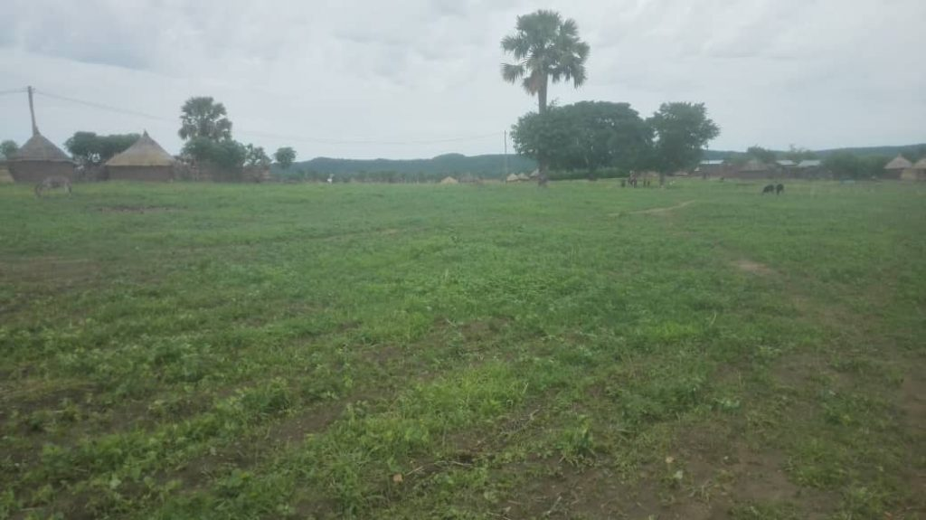 New land purchase at Sakje to build a proper AHM church